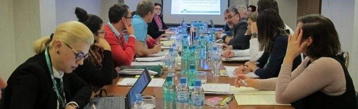 1. REAWG meeting in Skopje